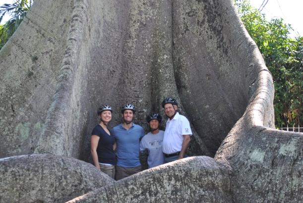 In the Kapuk Tree